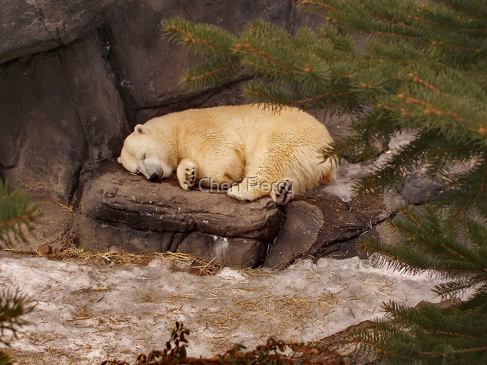 Nappy Time by Cheri Perry
