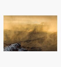 Condor In A Storm Photographic Print