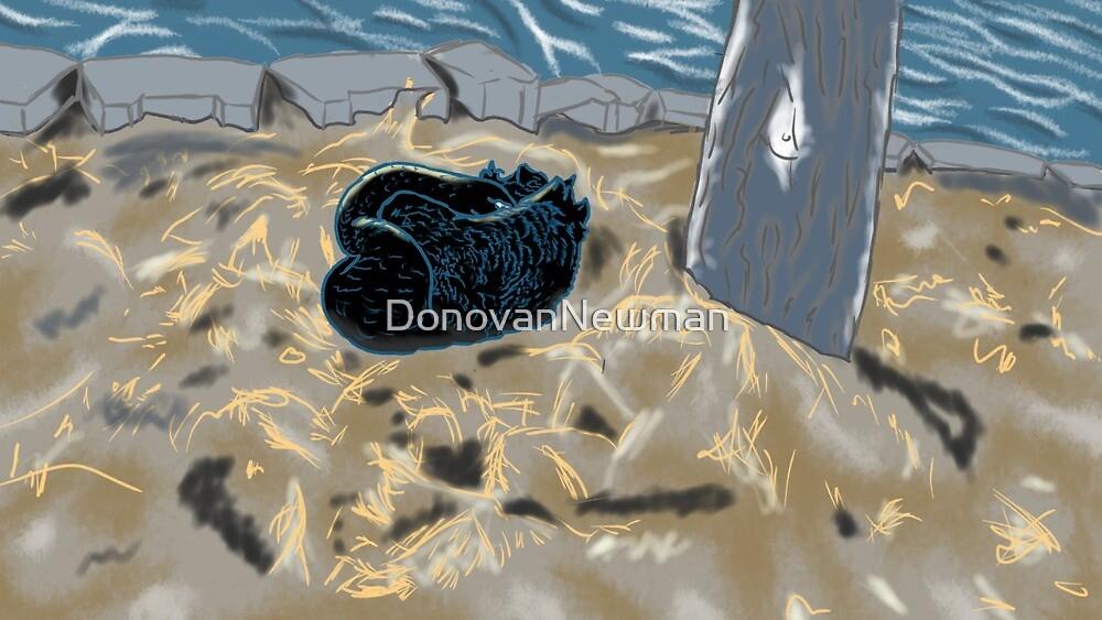 Black Swan by DonovanNewman