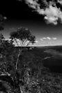 Burragorang-Tal NSW von Evita