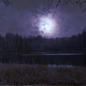 NIGHT by Lora