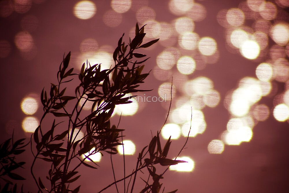 Whispers by Jonicool