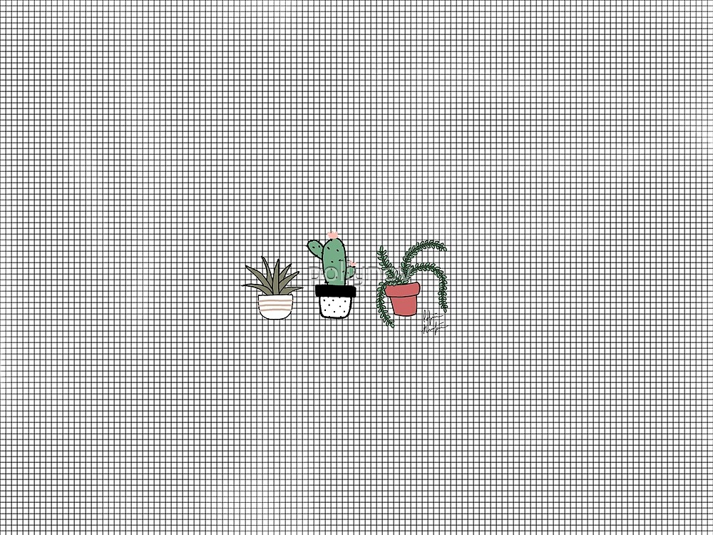 Cacti by pollynov