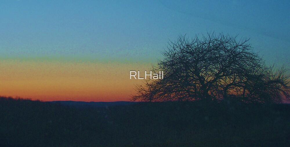 Sunset Tree by RLHall