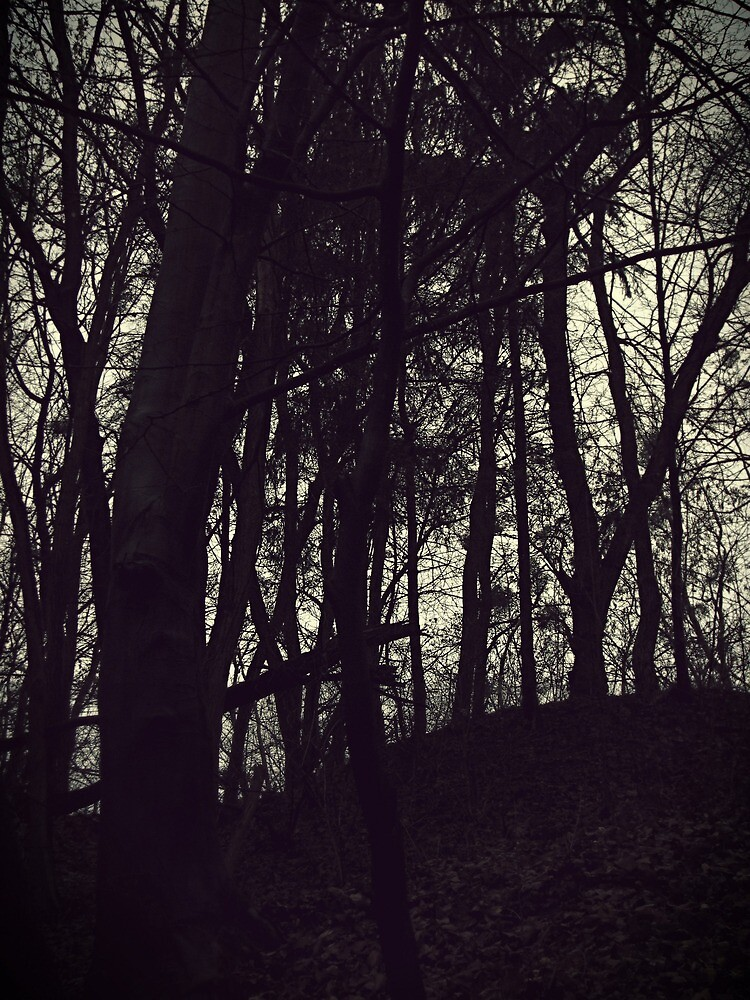 dusky forest black and wight by AliceKraft