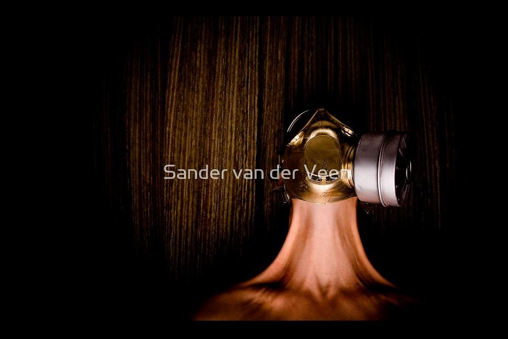 stretch for gold by Sander van der Veen