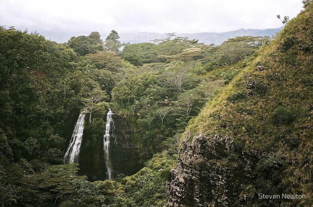 'Opaeka'a Falls, Kauai by Steven Newton