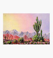 A Desert Scene * Photographic Print