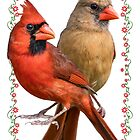 Mr. and Mrs. Northern Cardinal by Bonnie T.  Barry