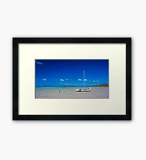 Dingo Beach Framed Print