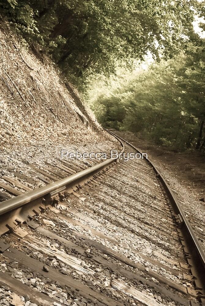 PanAm Railroad Tracks by Rebecca Bryson