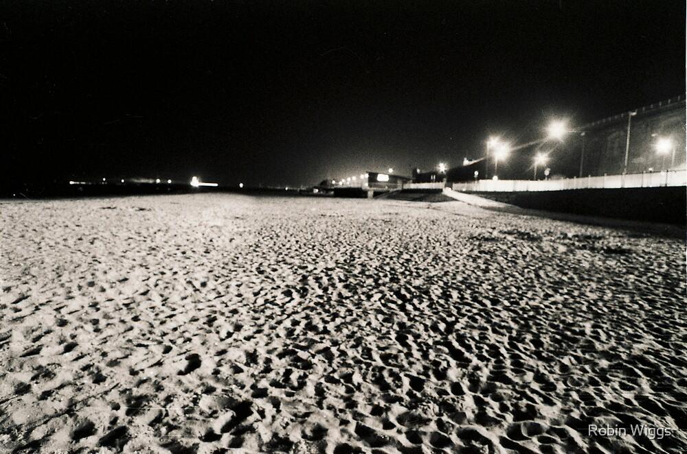 Lunar Beach by Robin Wiggs