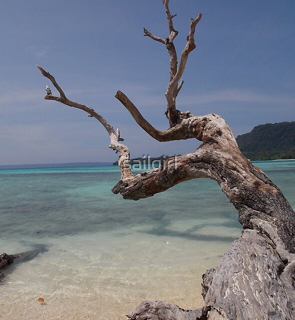 South Pacific Dreaming by sailgirl