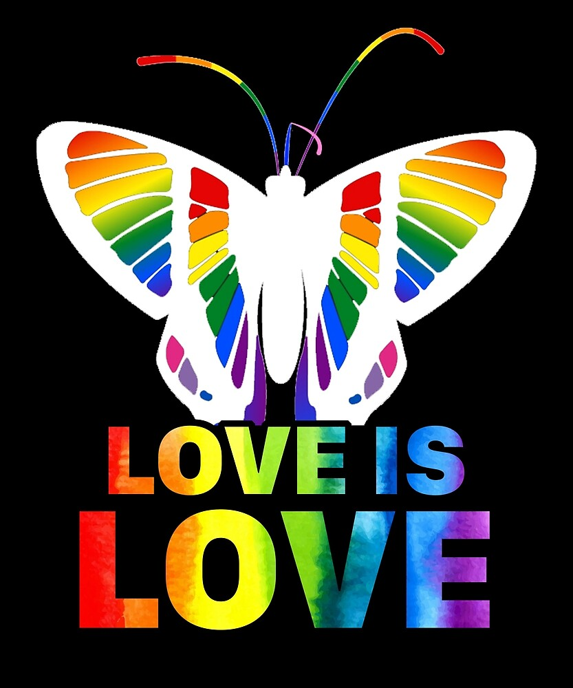 Butterfly LGBT Pride Gay T Shirt Love Is Love Shirt by sondinh