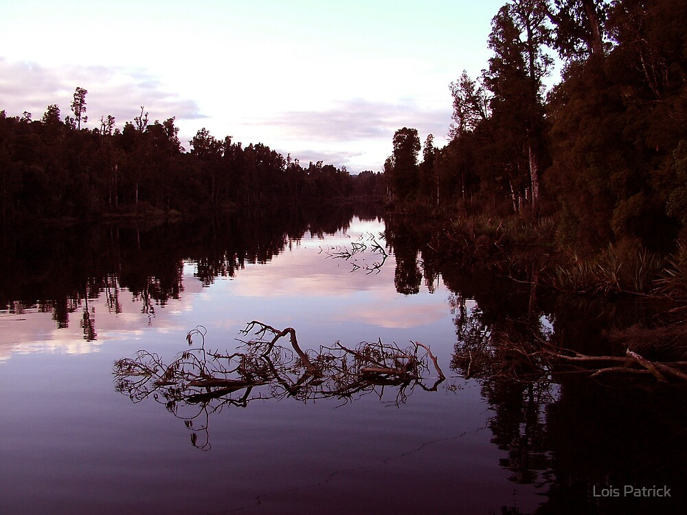 River Reflections by Lois Patrick