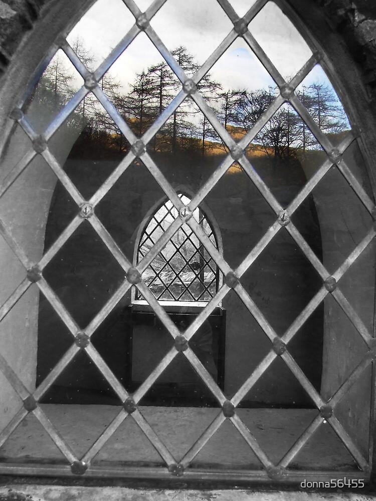 Through a church window by donna56455