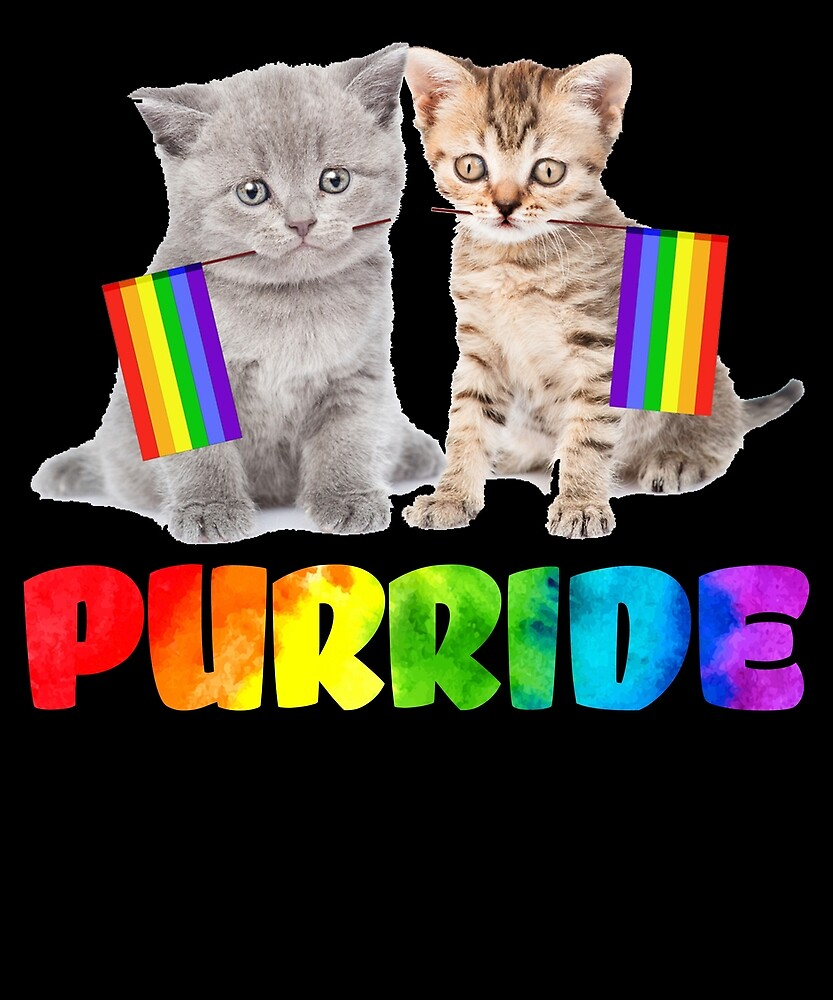 Funny Gay Pride Cat T Shirt - LGBT Purride by sondinh