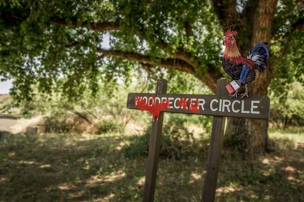 Rooster Circle by Randy Turnbow