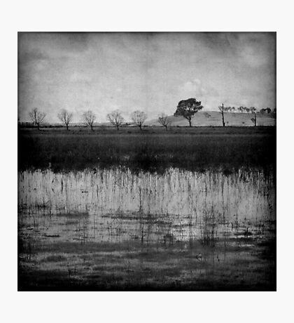 Middle of Winter Photographic Print