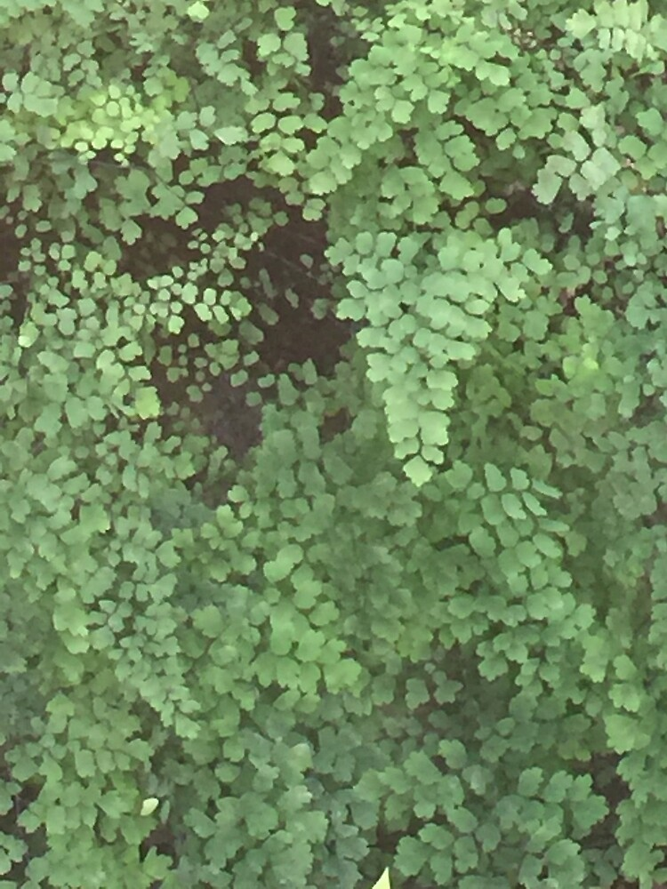 Nature in Green by MelissaGG