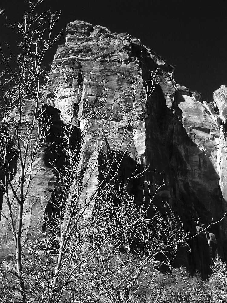 Zion Vista No. 3 by Benjamin Padgett