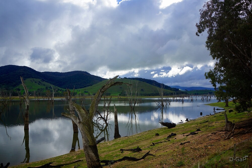 The Mighty Murray by D-GaP