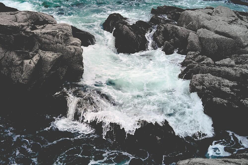Acadia National Park Ocean by Minivillage