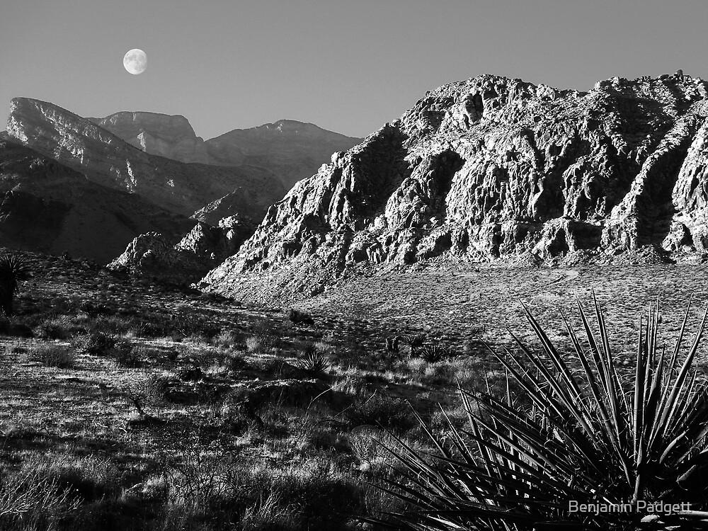 Desert Moon by Benjamin Padgett