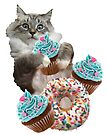 Donut Cupcake Cat by heARTcart