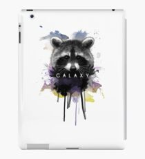 Raccoon Galaxy iPad Case/Skin