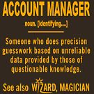 ACCOUNT MANAGER DEFINITION by minhthien