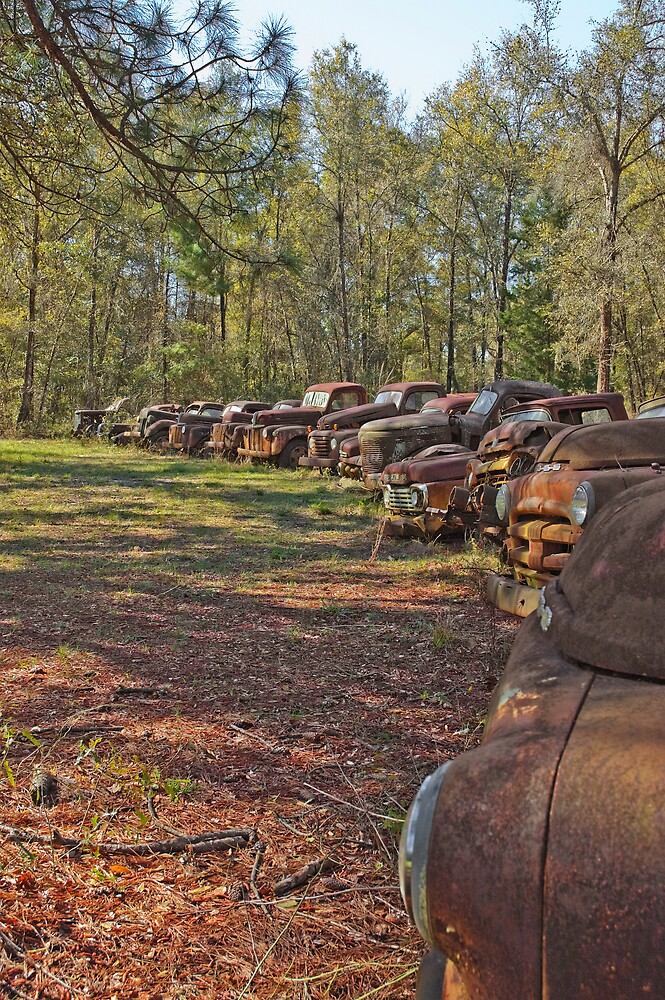 Rusty Vintage Cars and Trucks by pjwuebker