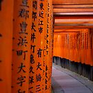 Tori Gates - Fushimi Inari Shrine by Matt  Streatfeild