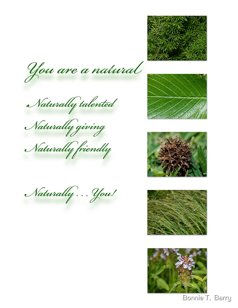 You are a natural . . . by Bonnie T.  Barry