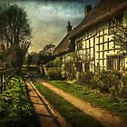 A Lane in Blewbury Oxfordshire by IanWL