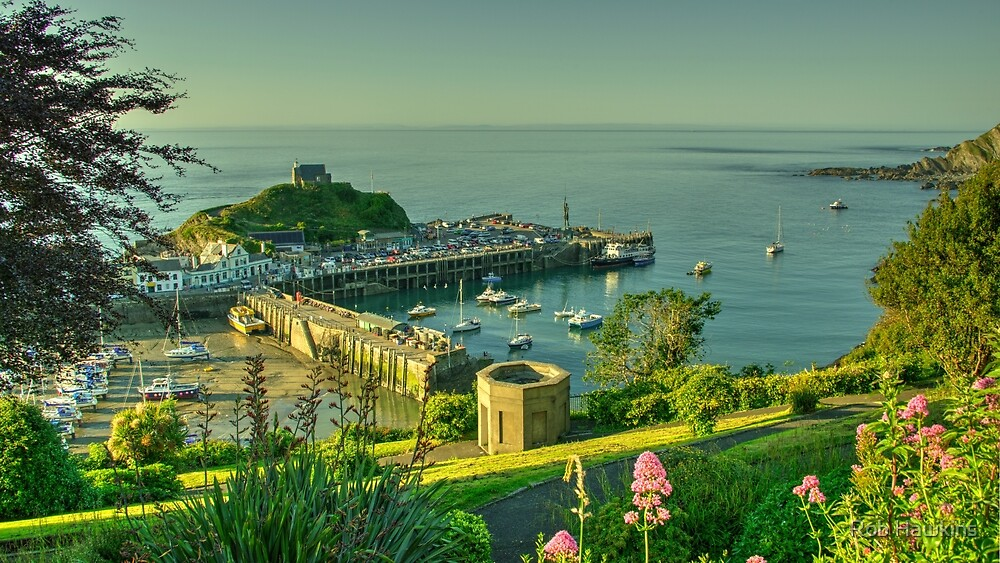Ilfracombe Harbour Summer  by Rob Hawkins