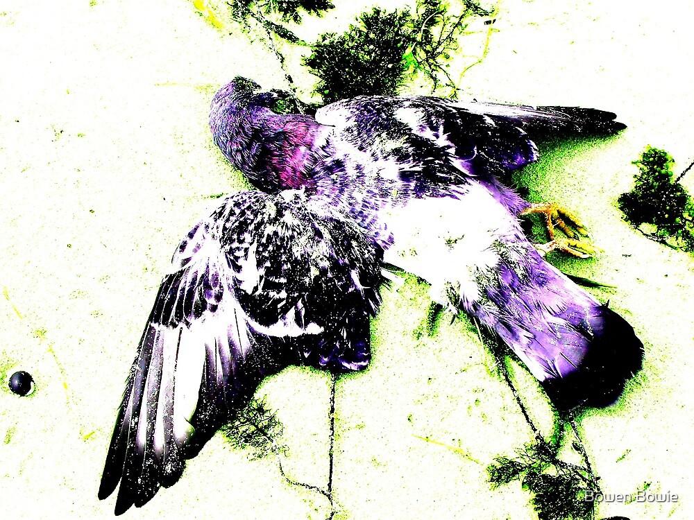 Purple Pigeon Green Seaweed by Bowen Bowie-Woodham