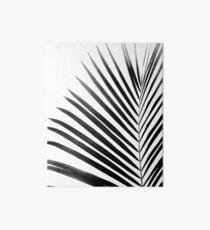 PALMENBLATT Black & White Galeriedruck