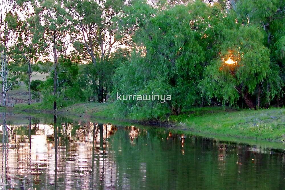 Evening Peppercorns by Penny Kittel