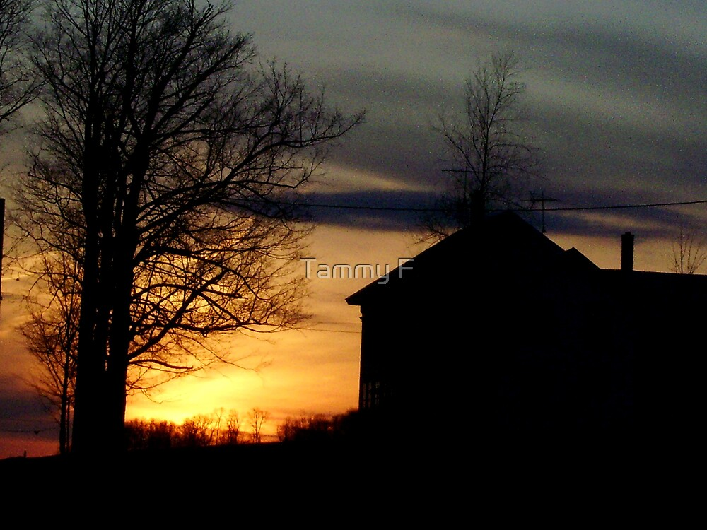 Farmhouse Sunset by Tammy F