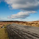 Wicklow in Winter  by Martina Fagan