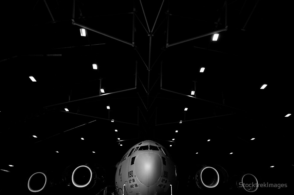 A C-17 Globemaster III sits in a hangar at McChord Field Air Force Base, Washington. by StocktrekImages