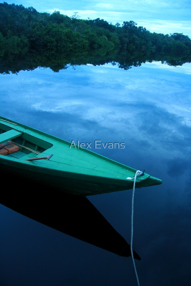 Amazon River Boat by Alex Evans