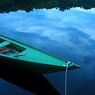 Amazon River Boat by Alex Evans
