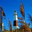 """Montauk Point Lighthouse, NY "" by Jaime Hernandez"
