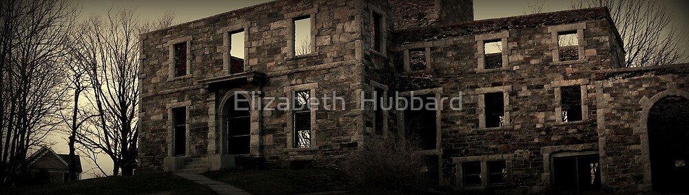 Zombie Chamber by Elizabeth  Hubbard