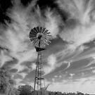 Wispy mill by Penny Kittel