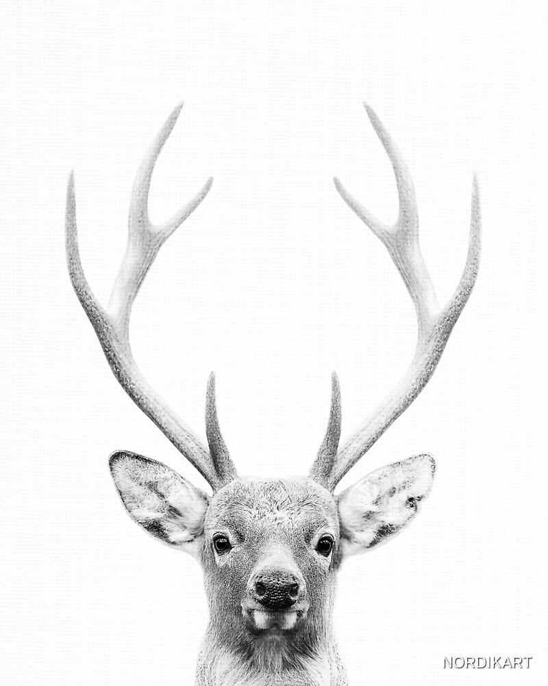 DEER by NORDIKART