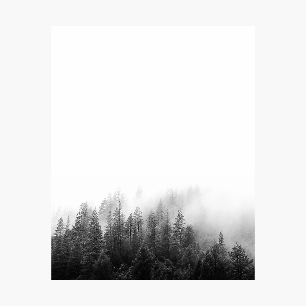 WALD Minimalist Fotodruck