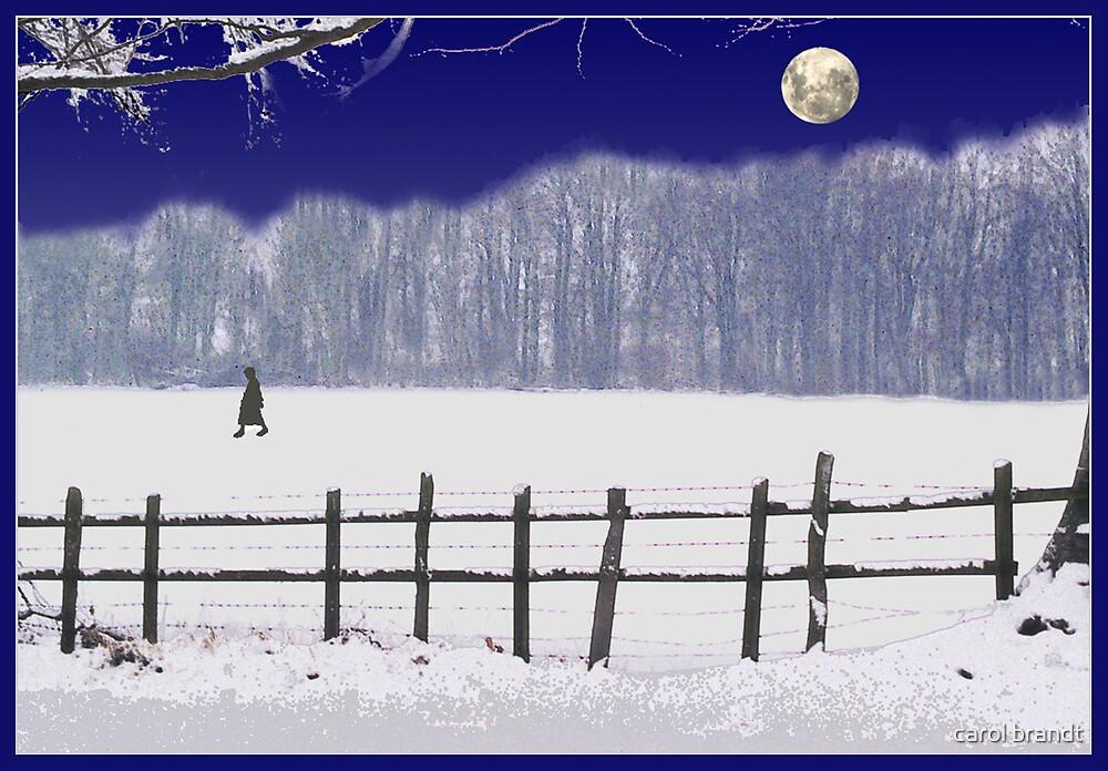 snow moon by carol brandt